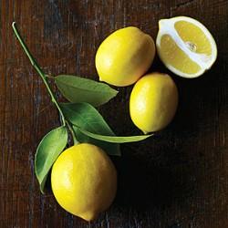 Кислый, но очень полезный лимон